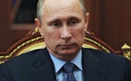 """Ông Putin: """"Thật tệ hại khi Kiev đổ lỗi cho Nga về thất bại của họ"""""""