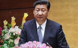 """Ông Tập Cận Bình: """"Gen hòa của Trung Quốc chưa bao giờ biến dị"""""""