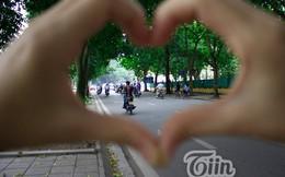Những hàng cây xanh Hà Nội trong tim bạn, tim tôi!