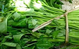 Các loại rau chứa nhiều giun sán và cách tẩy sạch