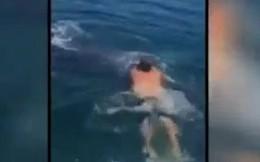 Liều lĩnh cưỡi cá mập và cái kết bất ngờ
