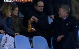 David Moyes ung dung leo rào, ăn bim bim của fan nữ
