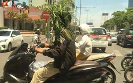 Dân mạng bức xúc với hình ảnh người dân đội cây tham gia giao thông