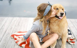 """Bài viết đáng suy ngẫm về """"Những đứa trẻ không hề sợ chó"""""""