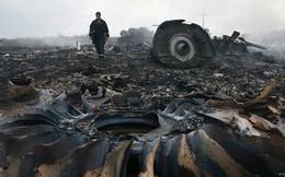 MH17 trúng tên lửa do Israel sản xuất?