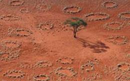 Những vùng đất kỳ lạ mà khoa học không thể lý giải nổi
