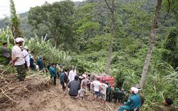 Xe lao xuống vực: Gốc cây cổ thụ đã cứu mạng 41 người?