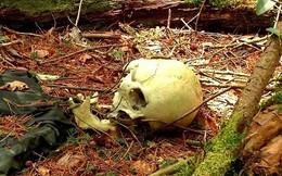 Giải mã bí ẩn lạnh gáy trong khu rừng tự sát