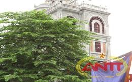 Tin kinh tế 20/4 - 26/4: Lâu đài khu vườn đào giá 5 triệu USD