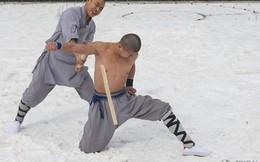 Giải mật các tuyệt kỹ võ công Thiếu Lâm Tự