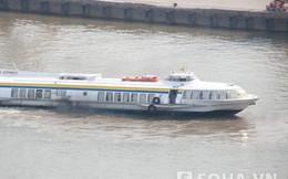"""TP.HCM sắp có hai tuyến """"buýt đường sông"""" vốn xây dựng trăm tỷ"""