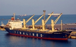Vì sao Vinalines kiến nghị mua tàu mới?