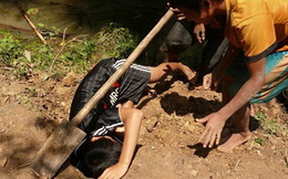 Thò tay vào lỗ bắt cua, bé 11 tuổi bị rắn cắn tử vong