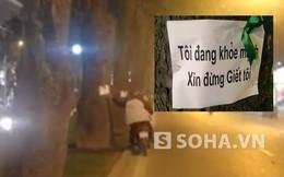 """Xuất hiện những tờ giấy """"lạ"""" trên thân cây ở Hà Nội"""