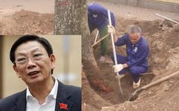 Chủ tịch HN Nguyễn Thế Thảo yêu cầu dừng chặt hạ cây xanh