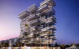 Có gì đặc biệt trong căn hộ penthouse hạng sang số 1 Dubai?
