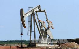 Giá dầu Brent xuống thấp nhất 7 năm