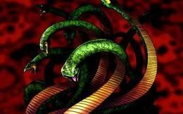 Huyền thoại quái vật rắn 8 đầu 8 đuôi ở Nhật Bản