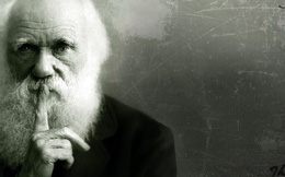 Điều gì khiến Darwin bó tay, không thể giải thích nổi?