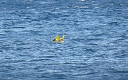 Bố mẹ mải tắm nắng, để con trôi dạt cả cây số trên biển