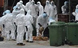 Xuất hiện người nhiễm cúm A/H9N2 đầu tiên
