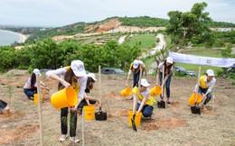 Hội thảo quốc tế liên kết phát triển du lịch tại Bình Thuận