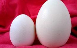 Những người không nên ăn trứng ngỗng
