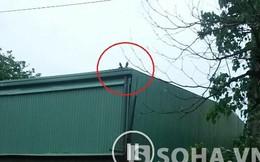Dứt tiếng nổ lớn, nam thanh niên nằm sõng soài trên mái nhà