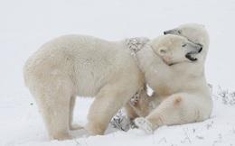 Bác sĩ ung thư hàng đầu thế giới: Hãy ôm nhau đi!