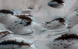 NASA công bố hình ảnh ngỡ như trên sao Hỏa có rừng cây