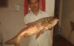 """Câu được cá mè """"khủng"""" trên sông Đồng Nai"""