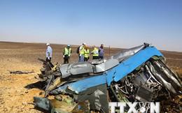 Nga xác định loại thuốc nổ trong vụ rơi máy bay tại Ai Cập