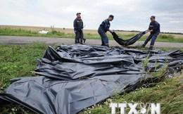 Lực lượng ly khai miền Đông Ukraine công bố tài liệu về vụ MH17