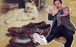 """Chàng MC """"nghiện"""" giày và mê mèo nhất VTV"""