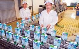 Sếp DN sữa nội: 'Vinamilk như hotgirl, phải chờ đại gia'