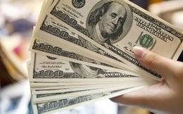 Tỷ giá đồng USD đạt mức đỉnh hơn một thập niên
