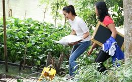 Hành động đẹp dịp cuối năm của hoa hậu Phạm Hương