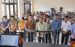 Phó Thủ tướng đề nghị xem xét lại kết quả điều tra, xét xử vụ án Minh Sâm