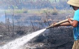 Cháy ở U Minh Hạ: Ngưng dập lửa để... chờ mưa