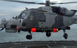 """Nhận diện sức mạnh trực thăng """"Mèo rừng"""" Hàn Quốc vừa tiếp nhận"""