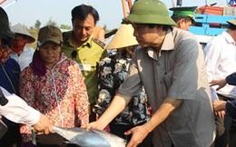 Bí thư Tỉnh ủy Quảng Bình mua cá, dọn rác cùng ngư dân