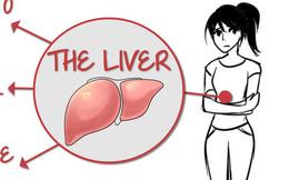 Đây là những điều bạn cần làm hàng ngày để giải độc cho gan
