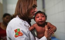 Hóa chất diệt muỗi nghi ngờ gây teo não ở trẻ có ở Việt Nam