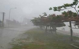 Áp thấp nhiệt đới mỗi giờ đi được 10-15km