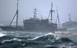 """Tàu cá TQ vây chiến hạm và đòn hiểm có thể khiến Mỹ """"bó tay"""" trên biển Đông"""