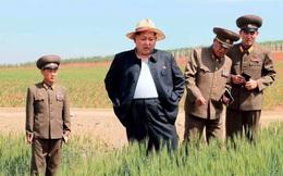 Kim Jong Un cất giữ thông tin bí mật nhất về mình ở đâu?