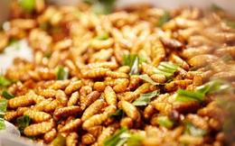 """Loại thực phẩm rẻ tiền ở Việt Nam được Trung y coi là """"thần dược"""" bổ thận tráng dương"""