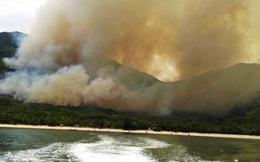Tan hoang sau đám cháy dữ dội khu vực rừng Nam Hải Vân