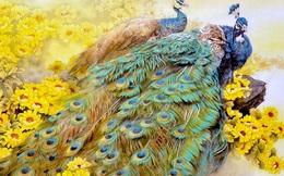 Bạn biết gì về Khổng Tước, loài chim Phật Mẫu cao quý?