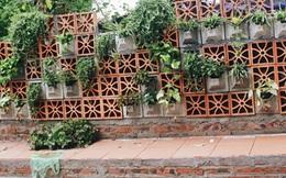 """Gặp cậu SV Báo chí - tác giả của 4 vườn hoa """"mọc lên"""" từ bãi rác ở Hà Nội"""